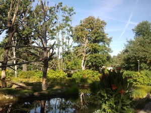 Herbststimmung im Zoo Dresden